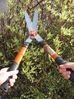 Garden Shears withStainless steel Blades.